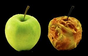 Manzana buena y pasada